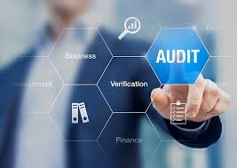 objectives of audit to your business