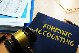 Forensic Accountants SOW Professional